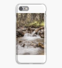 Jasper River iPhone Case/Skin