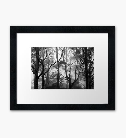 The Clearest Way into The Universe is Through a Forest Wilderness Framed Print