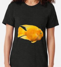 Parrot fish illustration Tri-blend T-Shirt