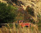 Oregon Truck  by Larry Costales