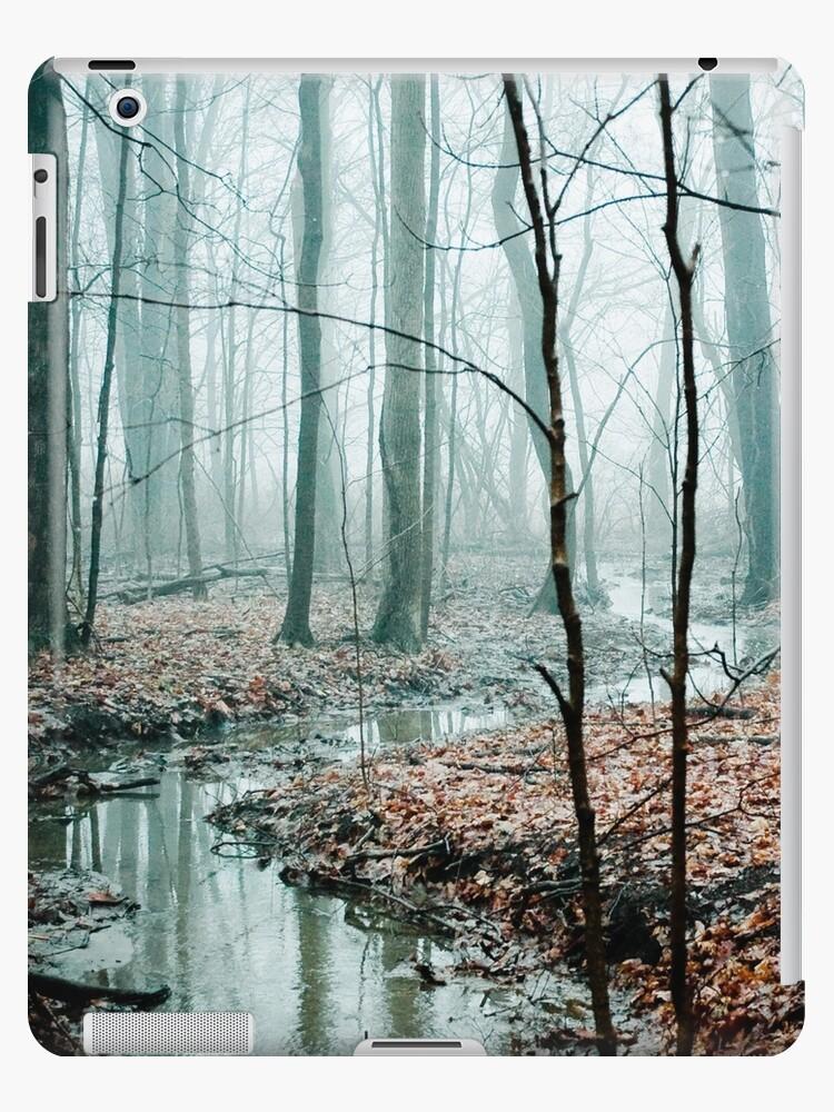 Winding Creek by OLIVIA JOY STCLAIRE