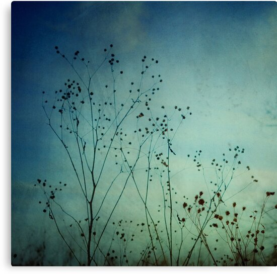 Ethereal Moment by OLIVIA JOY STCLAIRE