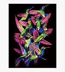 Hummingbird Dance in Sharpie Photographic Print