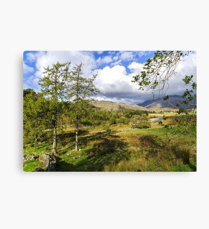 The Duddon Valley Canvas Print