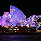 Vivid 2016 ... Patterns in Blue & Lavender by Michael Matthews