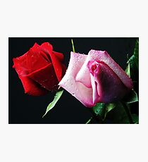 A Study in Red & Pink (Greeting Card or Print) Photographic Print