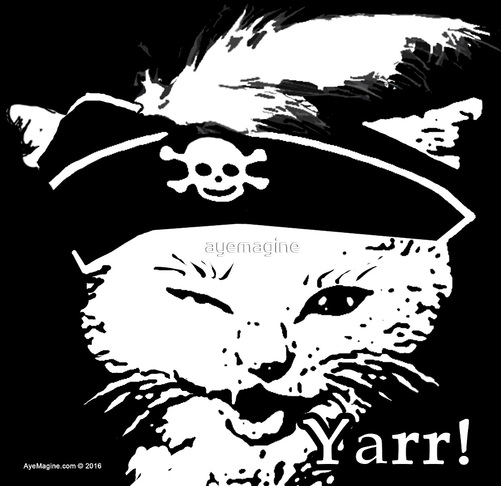 Pussy Pirate by ayemagine