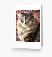 Queen Cleopatra Greeting Card