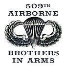 Jump Wings - 509th Airborne - Brothers in Arms by Buckwhite