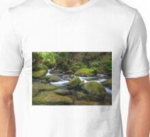 Whatcom Falls Creek Unisex T-Shirt