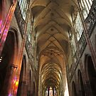Prague St. Vitus Cathedral Interior by Elena Skvortsova