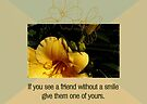 If You See A Friend Without A Smile Give Them One Of Yours by Sandra Foster