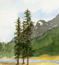 Mountain Meadow Solitude Sticker