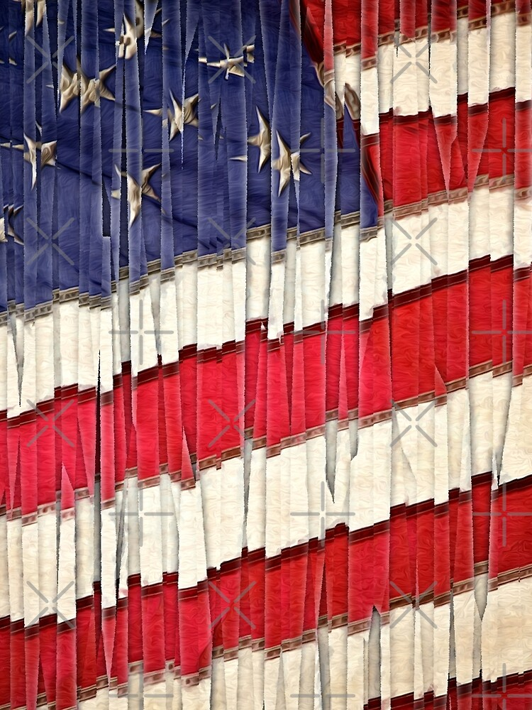 Abstract American Flag  by morningdance
