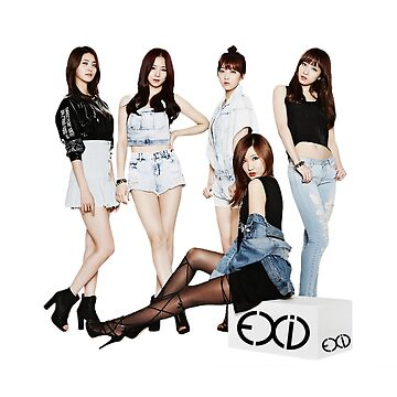 EXID group by rainbow321