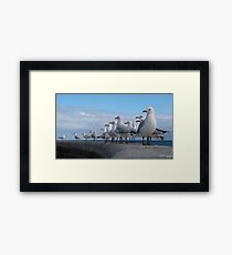 Just looking! Framed Print