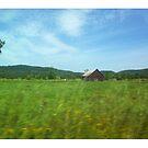 rural farm nature by artherapieca