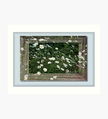 Daisies Gone Wild ~ in a Frame Art Print
