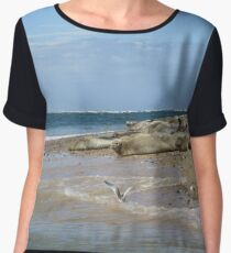 Seals On Norfolk Coast Chiffon Top