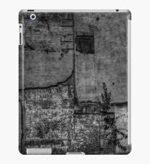Urban Wall iPad Case/Skin