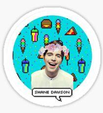 Shane Dawson Flower Crown Sticker