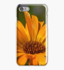 goud gele goudsbloem iPhone Case/Skin