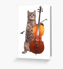 Cello Cat - Meowsicians Greeting Card