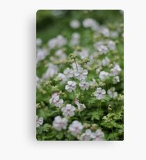 The Fellowship of the Flowers Canvas Print
