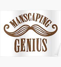manscaping genius Poster