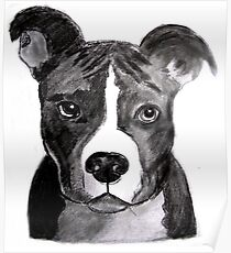 Good Dog Pit Bull Poster