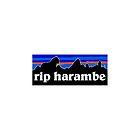 RIP Harambe Patagonia by cohara17