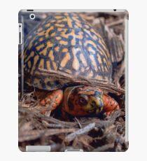 Male Box Turtle iPad Case/Skin
