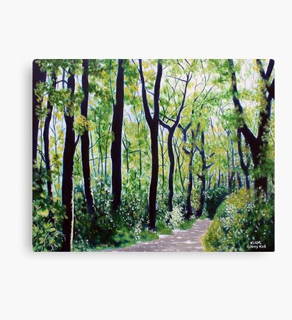 'Tall Trees Along the Moses Cone Trail' Canvas Print