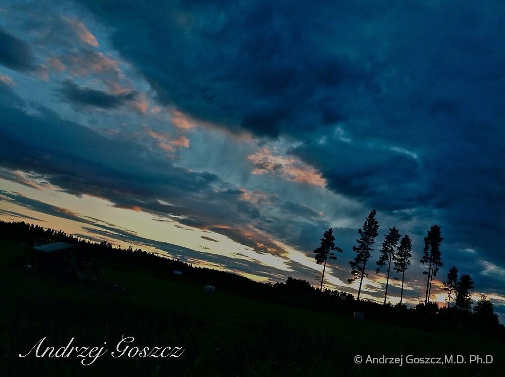 A Midsummer Night's Dream . Laponia . Sweden. Free Europe . Anno Domini 2013.  © Dr.Andrzej Goszcz. by © Andrzej Goszcz,M.D. Ph.D