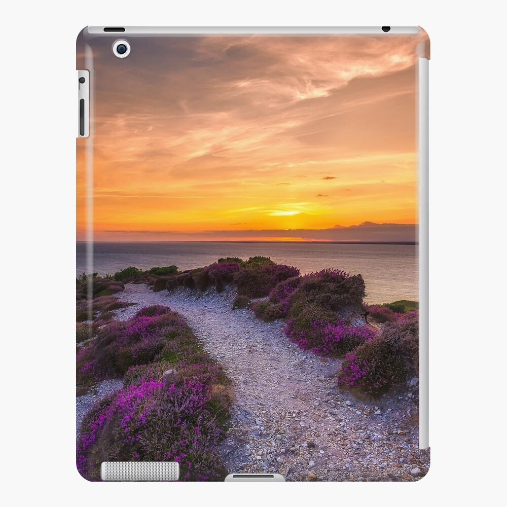 Sunset Path iPad Case & Skin