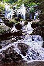 Catawba Falls - Analog HDR by Bill Wetmore