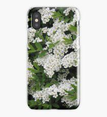 Pretty White Spirea Blossoms iPhone Case