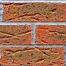 I am A Red Brick Wall by Remo Kurka