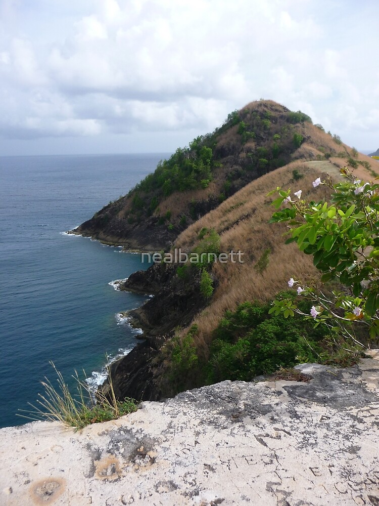 Signal Peak, St. Lucia by nealbarnett