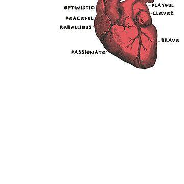 Heart Anatomy by borjaandrea