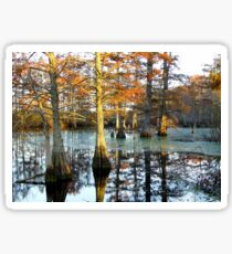 Hill's Lake In Autumn Sticker