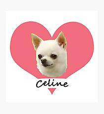 Celine Appreciation Photographic Print