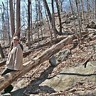 Hiking In Ramapo Mountain State Forest by Jane Neill-Hancock