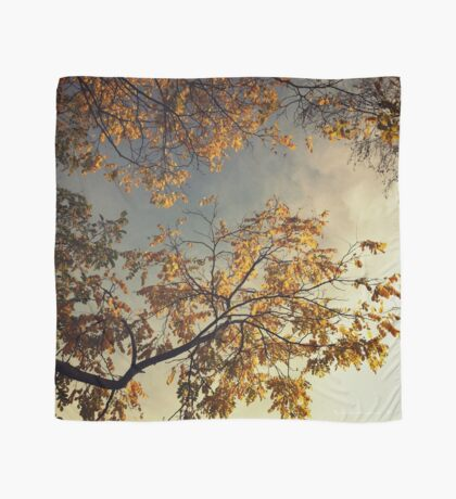A Day in Autumn Scarf