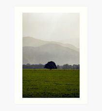 Greytown - New Zealand Art Print