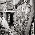 The Old Venice Bookshop by Andy Freer