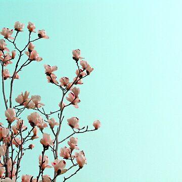 Spring by Dani22