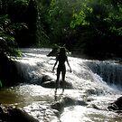 waterfalls by Dan Algina
