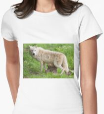 Arctic wolf feeding pups Women's Fitted T-Shirt