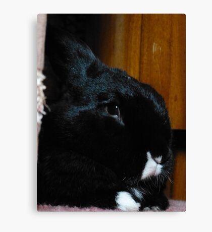 Smudge Portrait Canvas Print